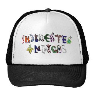 Índigos poors - logo of the band trucker hat