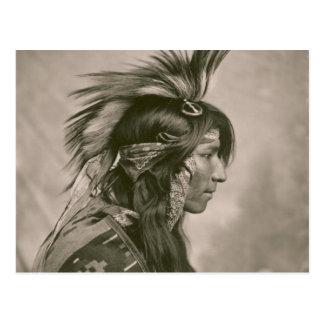 Indio del Cree Tarjeta Postal