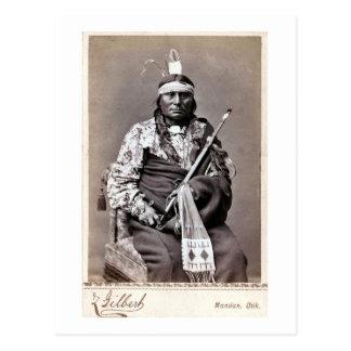 Indio del nativo americano de William Gilbert Gali Tarjeta Postal