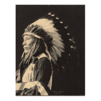 Indio del vintage: Asustado de Eagle, Siux - Tarjetas Postales