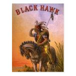 Indio negro del nativo americano del halcón postal