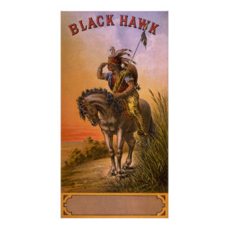Indio negro del nativo americano del halcón póster