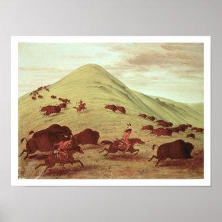 Indios de Siux que cazan el búfalo, 1835 (aceite e Poster