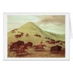 Indios de Siux que cazan el búfalo, 1835 (aceite e Tarjeta De Felicitación