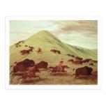 Indios de Siux que cazan el búfalo, 1835 (aceite Postales