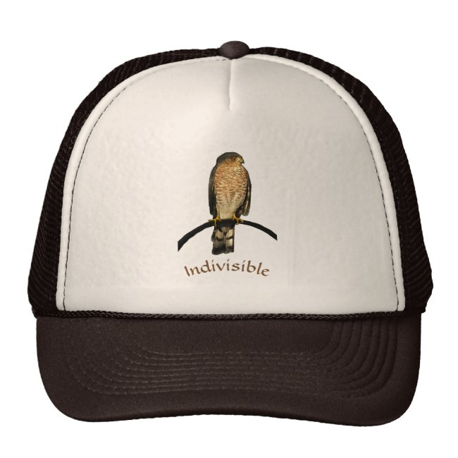 Indivisible Brown Hawk Hat