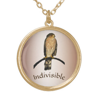 Indivisible Brown Hawk Necklace