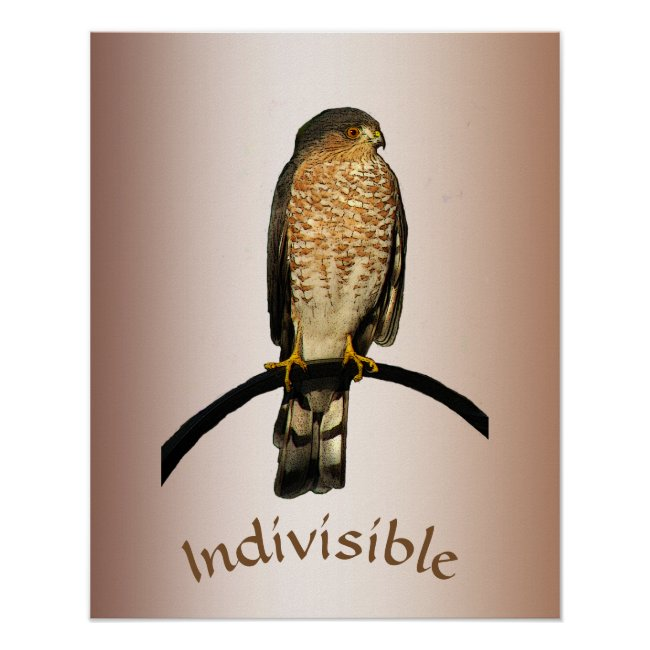 Indivisible Hawk Poster