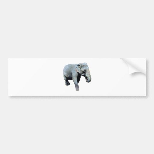 Indo-China Elephant 1p Left Car Bumper Sticker