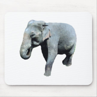 Indo-China Elephant 1p Right Mouse Pad