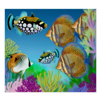 Indo-Pacific Coral Reef Fish Poster