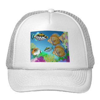 Indo Pacific Reef Fish Hat