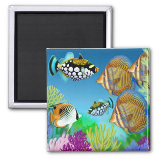 Indo Pacific Reef Fish Magnet