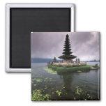Indonesia, Bali, templo de Ulun Danu Iman De Nevera