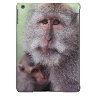 Indonesia, Bali, Ubud, Macaque Largo-atado 1 Funda Para iPad Air