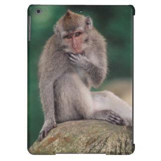 Indonesia, Bali, Ubud, Macaque Largo-atado 2 Funda Para iPad Air