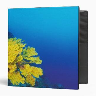 Indonesia, Banda Islands, prolific coral reefs Vinyl Binders