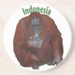Indonesia Coffee Break Coasters