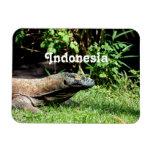 Indonesia Komodo Dragon Rectangle Magnets