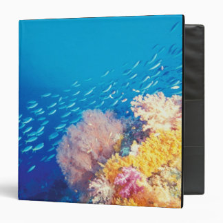 Indonesia, Papua formerly Irian), Misool, 3 Ring Binder