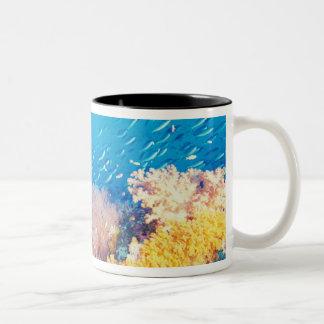 Indonesia, Papua formerly Irian), Misool, Two-Tone Coffee Mug