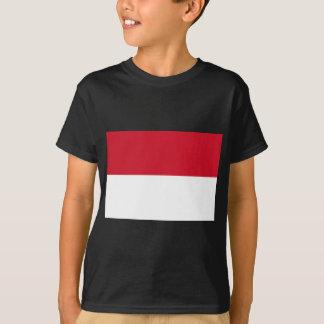 Indonesia Playera
