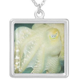 Indonesia, South Sulawesi Province, Wakatobi 2 Silver Plated Necklace