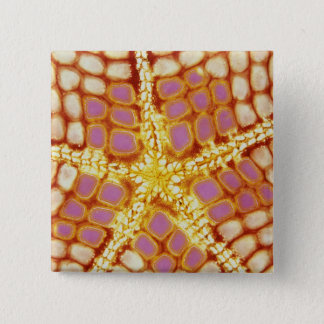 Indonesia. Starfish mouth, detail. Pinback Button