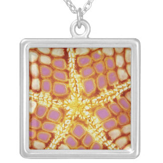 Indonesia. Starfish mouth, detail. Square Pendant Necklace