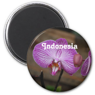 Indonesian Orchids 2 Inch Round Magnet