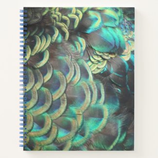 Indonesian Peacock Feathers Pattern Notebook