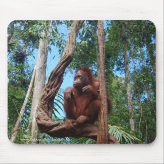Indonesian Rainforest Lounging Chair Mouse Pad