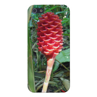 Indonesian Wax Ginger Cover For iPhone SE/5/5s