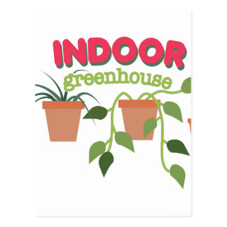Indoor Greenhouse Postcard