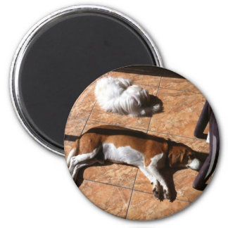 Indoor Tanning Doggy Style Refrigerator Magnet