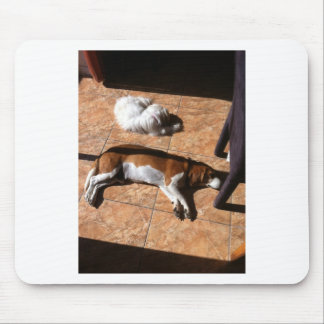 Indoor Tanning Doggy Style Mouse Pad