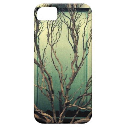Indoors iPhone 5 Cases