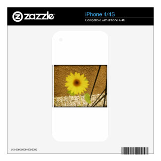 Industrial Sunflower Decal For The iPhone 4