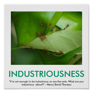 INDUSTRIOUSNESS motivational poster