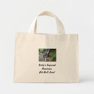 Indy's Cancas bags. Mini Tote Bag