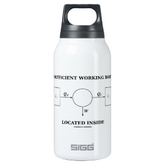 Inefficient Working Body Located Inside Physics SIGG Thermo 0.3L Insulated Bottle