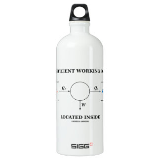 Inefficient Working Body Located Inside Physics SIGG Traveler 1.0L Water Bottle