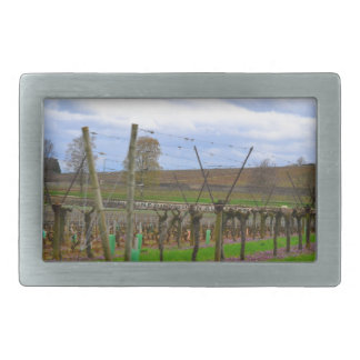 ineyard, Grape vines the French countryside Belt Buckle