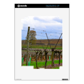 ineyard, Grape vines the French countryside iPad 2 Decals