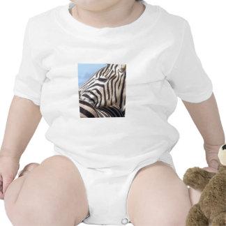 Infant White Zebra Creeper / Baby-Gro