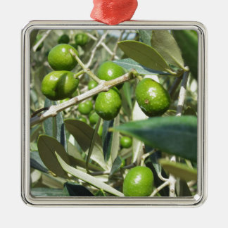 Infested olive tree by olive fruit fly metal ornament