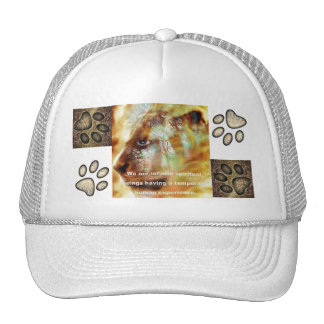Infinite Beings Trucker Hat