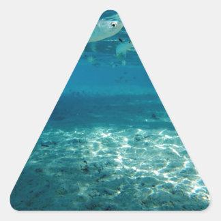 Infinity Blue Triangle Sticker