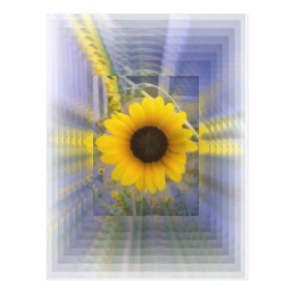Infinity Sunflower Post Cards