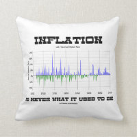 Inflation Is Never What It Used To Be Economics Pillow